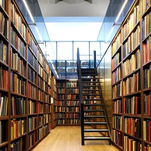 Библиотеки Бетлицы